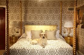 world u0027s top pet friendly hotels cnn travel