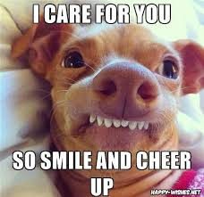 Funny Smile Meme - best cheer up memes funny images to cheer you up happy wishes