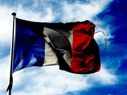 french internet provider blocks google business insider