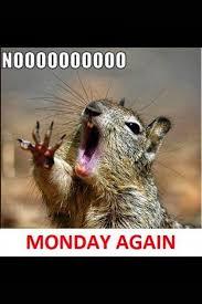 Monday Morning Meme - when you wake up on a monday morning via meme diary http