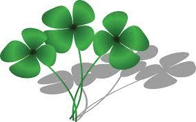 four leaf clover marketing clipart alabamaoperative extension