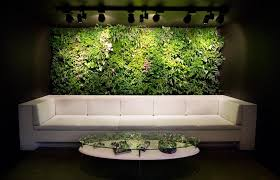 decorations fancy interior wall garden design with green plants