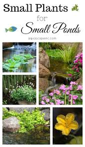 568 best ponds and water features images on pinterest backyard