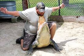 fan boat tours miami everglades group tours discounts wooten s everglades airboat tours