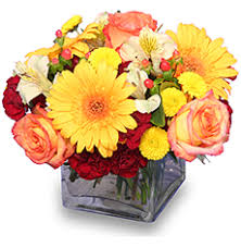 dillons floral s iga dillon floral arrangement galleries