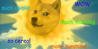 Much Dog Meme - dogecoin a cryptocurrency created as a joke about a dog meme has