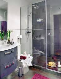 Best Small Bathrooms Images On Pinterest Small Bathroom - Apartment bathroom designs