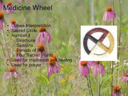native american healing plants native american garden recovering health and knowledge ppt download