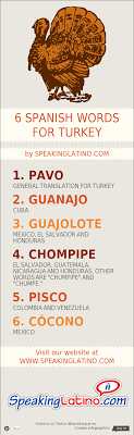 infographic 6 language words for turkey