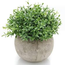 shop amazon com artificial plants