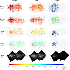 improving the spatial resolution of epiretinal implants by