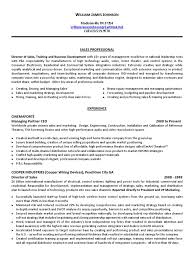 National Sales Director Resume Download It Operations Senior Management In Knoxville Tn Resume