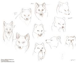 daily animal sketch u2013 foxes and frostbite u2013 last of the polar bears