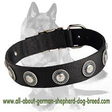 Comfortable Dog Collars Nylon Dog Collar With Silver Conchos For Comfortable All Weather