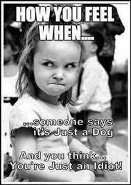 Angry Girl Meme - angry swing girl memes quickmeme on angry girl meme broxtern