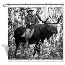Teddy Shower Curtain Teddy Roosevelt On Bullmoose Shower Curtain Teddy On A Bull