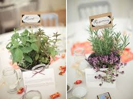 Potted Plants Wedding Centerpieces by 111 Best Potted Plants Images On Pinterest Centerpiece Ideas