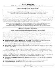 sample resume for business development business development resume template business development resume