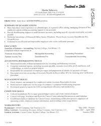 Resume Skills Summary Examples by Summary Of Skills Resume Examples Resume Examples 2017