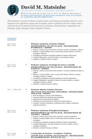 Cio Resume Examples by Cio Resume Samples Visualcv Resume Samples Database
