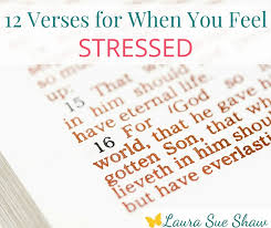 Comfort Verses 12 Verses For When You Feel Stressed Laura Sue Shaw