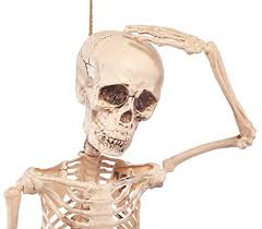 prextex 4 feet posable halloween skeleton full body halloween