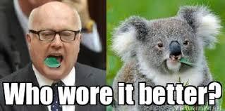 Koala Meme Generator - meme maker george brandis the koala generator