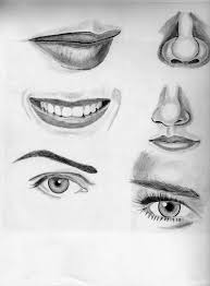 learn to draw pencil sketches learn to draw taylor swift step by