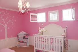 pink nursery ideas pink nursery ideas traditional nursery benjamin moore blushing