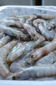 comment cuisiner les crevettes congel馥s crevettes sautées aux épices de cuisine créative recettes
