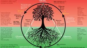 tree symbolism circle of life evolve consciousness evolveconsciousness org
