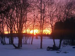 memphis mi beautiful sunset from our backyard in memphis photo