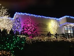 Washington Dc Zoo Lights by Baltic American Freedom Foundation Blog Baff Scholarship Baff