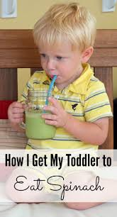 best 25 how to get my toddler to eat veggies ideas on