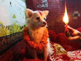 will be surprised to how other countries celebrate diwali