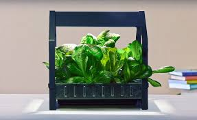 ikea launches indoor garden that can grow food all year round ikea