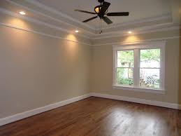 Tres Ceiling Paint Trey Ceiling Design Ideas Large Master - Bedroom ceiling paint ideas