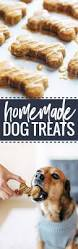 homemade thanksgiving cookies best 25 treats for puppies ideas on pinterest peanut the dog