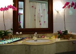 spa bathroom decorating ideas spa bathroom decor aloin info aloin info