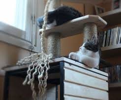 Instructables Cat Tree by Instructables Search Results