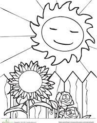 sun and sunflower worksheet education com