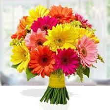 fruits flowers send online flowers to india flowers n fruits
