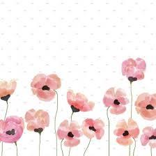Flower Screen Backgrounds - 91 best diseños images on pinterest wallpaper backgrounds