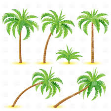 coconut tree clipart china cps
