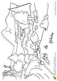 Coloriage Paysage Montagne Et Vallée Au Printemps