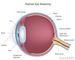 eye pain from light what are the most common causes of sharp eye pain