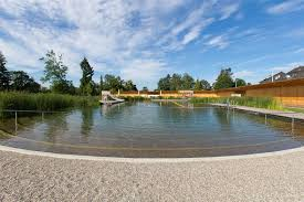naturbad riehen a natural swimming pool by herzog u0026 de meuron