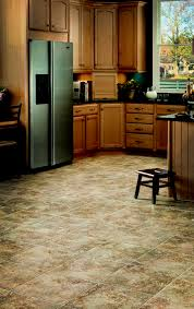 Dark Laminate Flooring In Kitchen Furniture Cozy Wooden Kitchen Armstrong Cabinets In White With