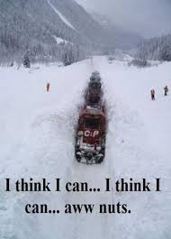 Bear Stuff Meme - deluxe bear stuff meme canadian snow humour funny and interesting