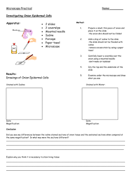 bacteria and viruses by aer teaching resources tes